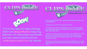 clips4sale daily pay